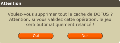 Confirmer_la_suppression_du_cache_DR.PNG